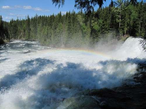 Waterfall Rainbow Nature Pine Trees Canada Green