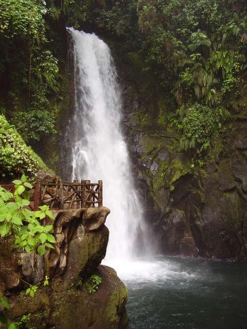 Waterfall Costa Rica Rainforest National Park
