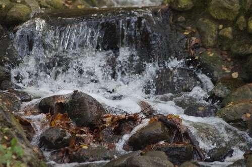 Waterfall Water Nature Landscape Waters Murmur