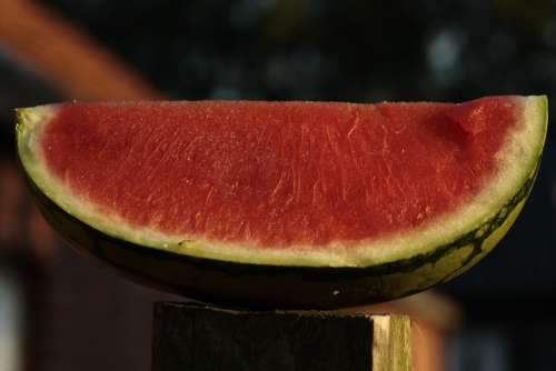 Watermelon Melon Fruit Food Delicious Eat Red