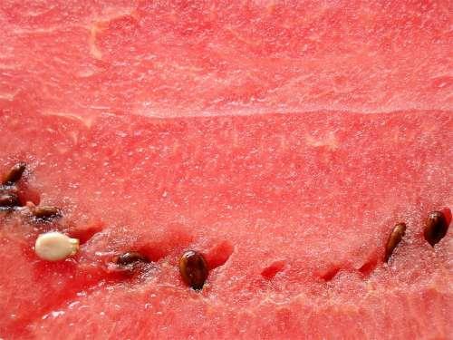 Watermelon Pulp Melon Fruit Delicious Healthy