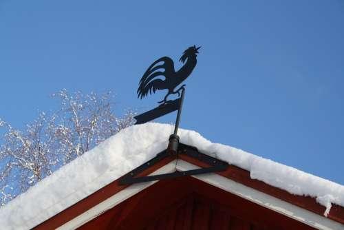 Weather Vane Cock Snow Winter