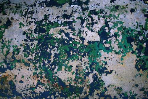 Weathered Paint Concrete Old Texture Grunge Wall