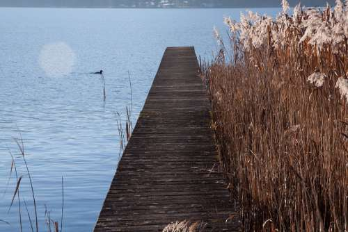 Web Lake Bank Water Blue Rest Sunny Landscape