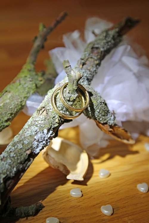 Wedding Rings Decoration Heart Autumn