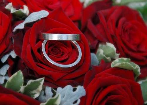 Wedding Rings Rings Wedding Roses Before