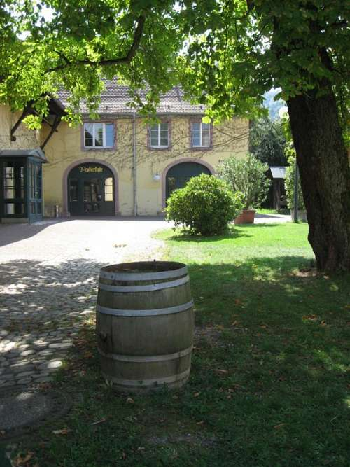 Weinhof Winery Barrel Hof Wine Barrel Building