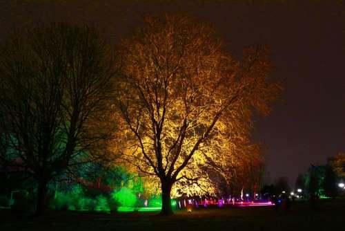 Westphalia Park Winter Lights Night Shot 2013