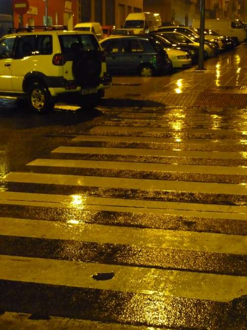 Wet Rain Water Pedestrian Crossing Calzada
