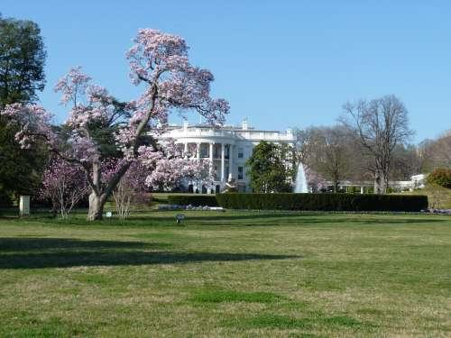 White House Washington Dc Politics Government