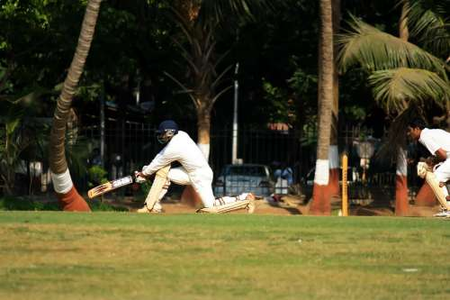 Wicketkeeper Cricket Batsman Ball Game India