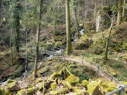 Wieladingen Murg Valley Black Forest High Rhine