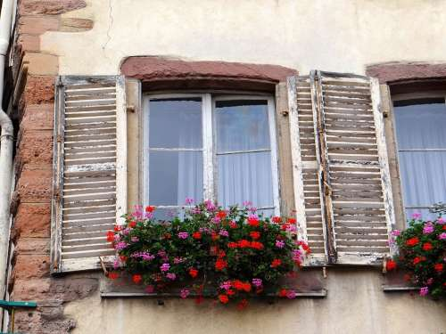 Window Shutters Flowers Stones Picturesque