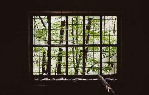 Window Iron Bars Prison Grill Dark Room Alone