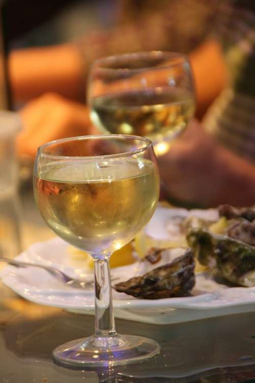 Wine Oysters Gourmet Wine Glasses Eat Restaurant