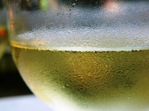 Wine White Wine Glass Wine Glasses