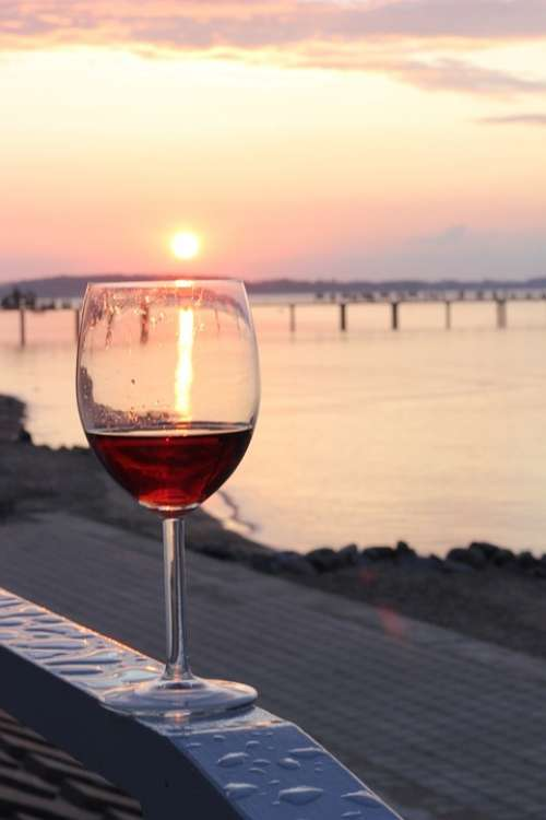 Wine Beach Sunset Sun Relax Enjoy Benefit From