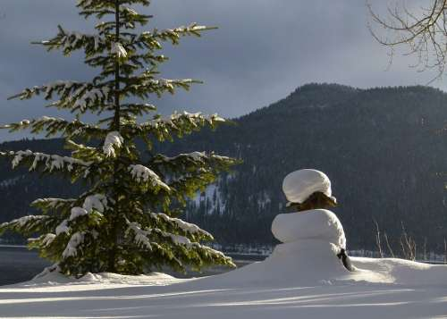 Winter Scenery Canim Lake British Columbia Canada