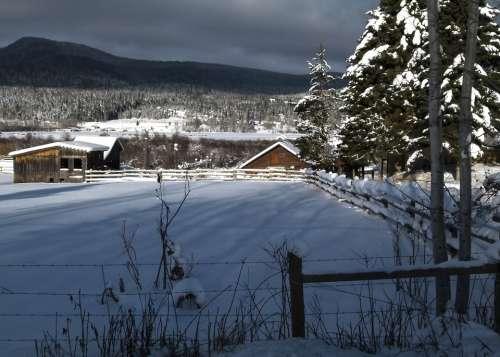 Winter Scenery Canim Lake British Columbia Canada