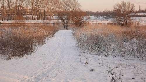 Winter Snow Cold White