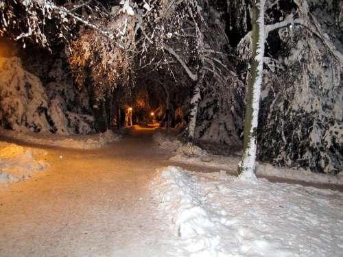 Winter Snow Landscape Park