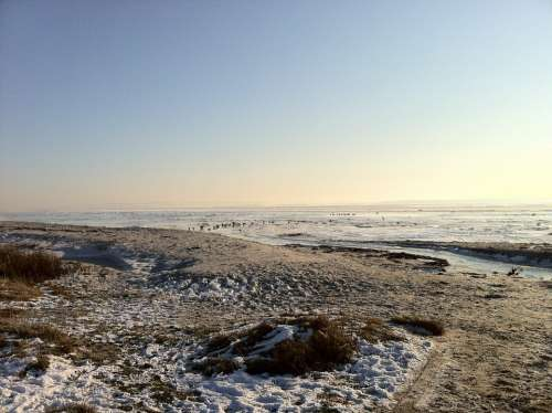 Winter Frozen Snow Water Blue Sky Beach Sand
