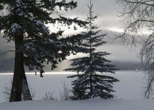 Winter Season Cold Snow Icy Landscape Scenery