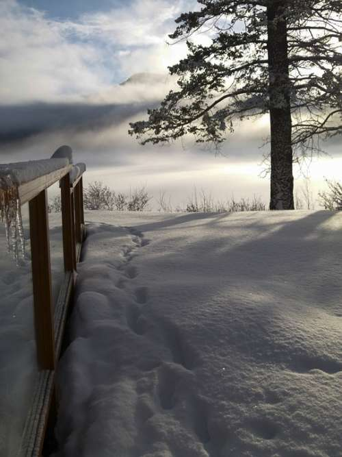 Winter Season Cold Snow Icy Landscape Scenery