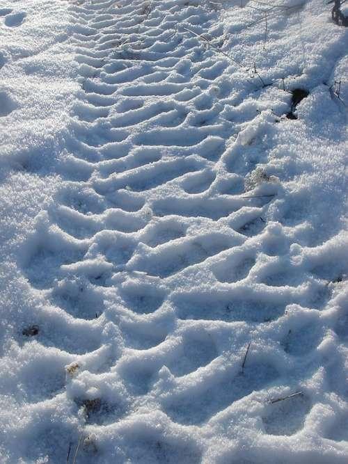 Winter Snow Print Path