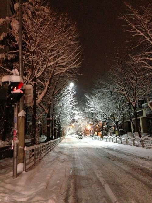 Winter Night Snow Street
