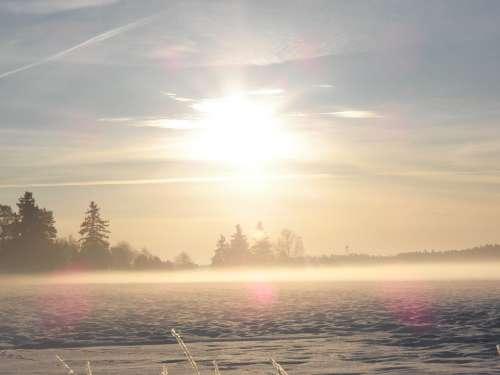 Winter Winter Dream Misty Foggy Cold Sunshine