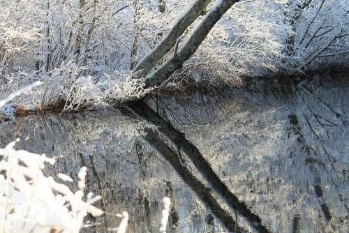 Winter Snow Reflection Ice Season Frost Outdoors