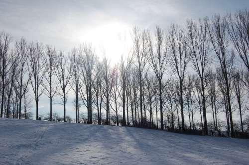 Winter Landscape Snow Nature