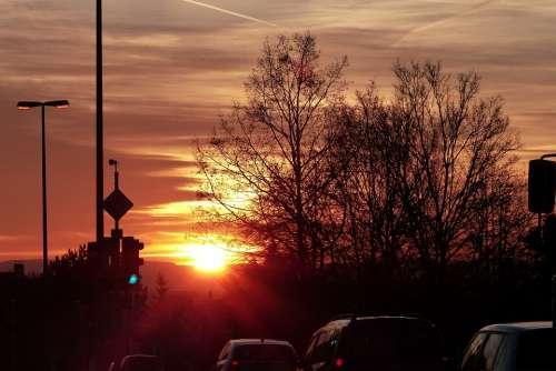 Winter Sun Red Winter Morning Sun Backlighting