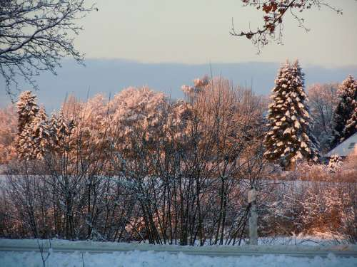 Wintry Winter Winter Mood Winter Light Winter Dream