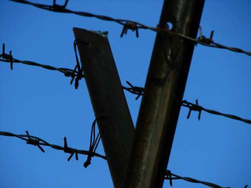 Wire Barbed Wire Fence Caught Pointed Sky Thorn