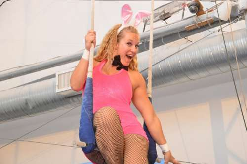 Woman Bunny Pink Blonde Perform Sitting