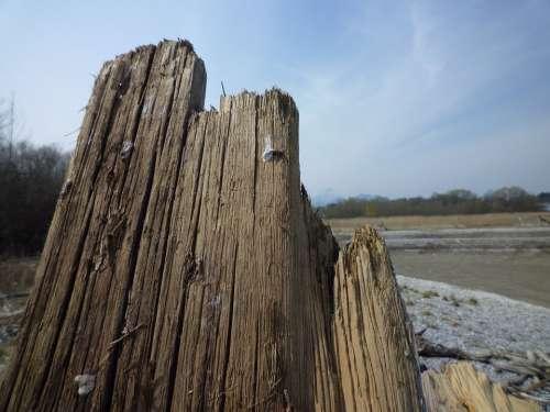 Wood Sawed Off Old Grain Clouds Sky