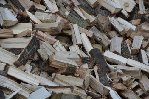 Wood Tree Wood For Stove Split Wood