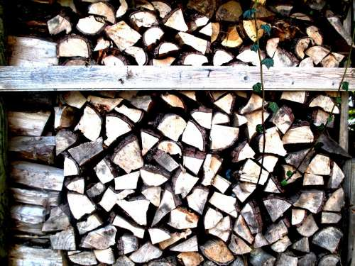 Wood Holzstapel Firewood Stacked Ivy Entwine