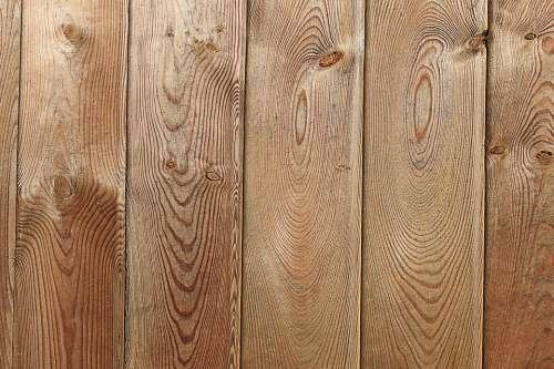 Wood Fence Texture Grain