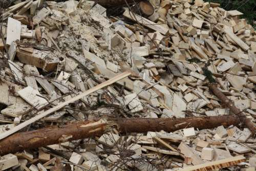 Wood Biomass Trunks