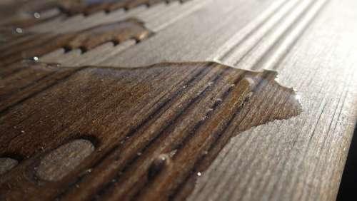 Wood Water Boards Floor Wooden Texture