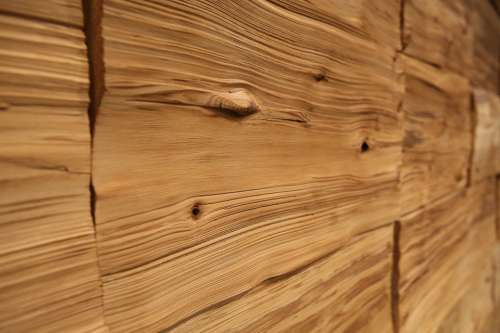 Wood Wall Annual Zone Wrinkles