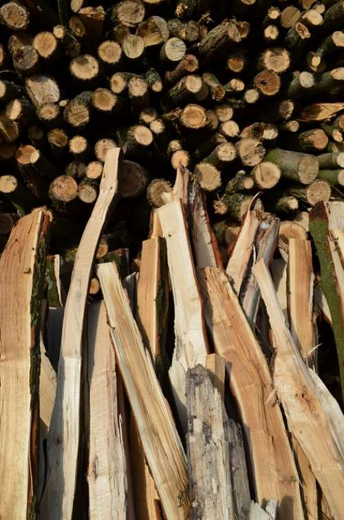 Wood Firewood Holzstapel Growing Stock Timber
