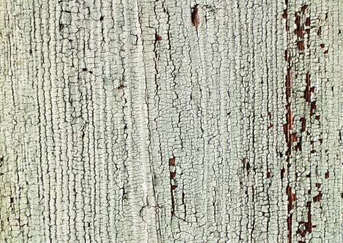 Wood Plank Board Color Structure Grain Background