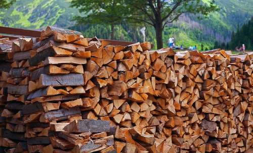 Wood Fuel Firewood Logs Wood Logs Beech Logs