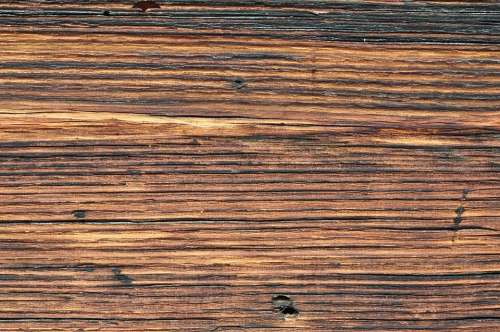 Wood Nature Brown Background