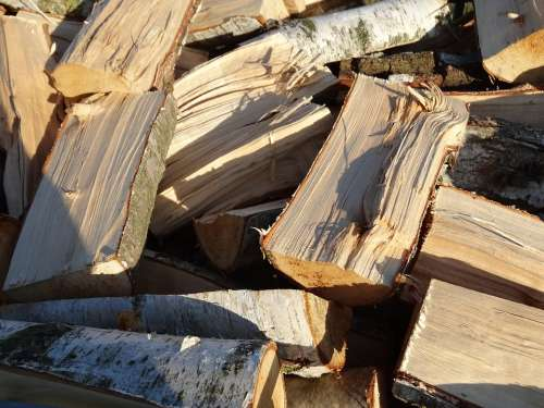 Wood For The Fireplace Wood Fireplace Forest