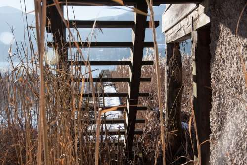 Wood Stairs Web Boardwalk Lake Bank Sky Water